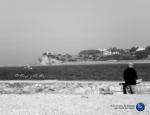 Referencia: El viejo y el mar